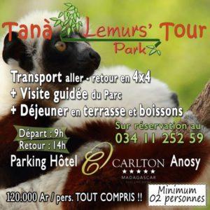 Tana Lemurs' Park Tour