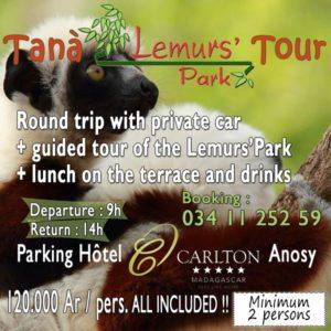 Tana Lemur's Park Tour